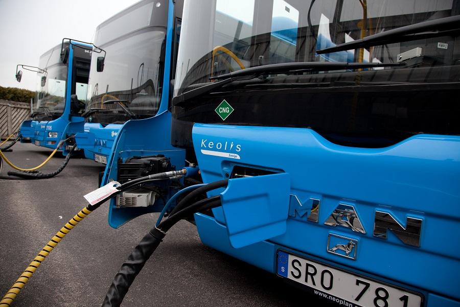 Bus_Schweden
